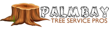 Palm Bay Tree Services Pros
